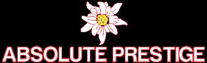 ABSOLUTE PRESTIGE S.L